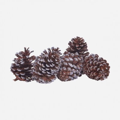 House Doctor  Pine cone 6 stk.